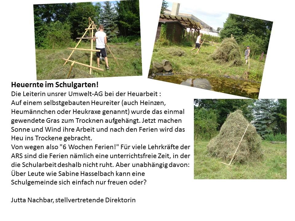 Bericht_Heuernte_2.jpg