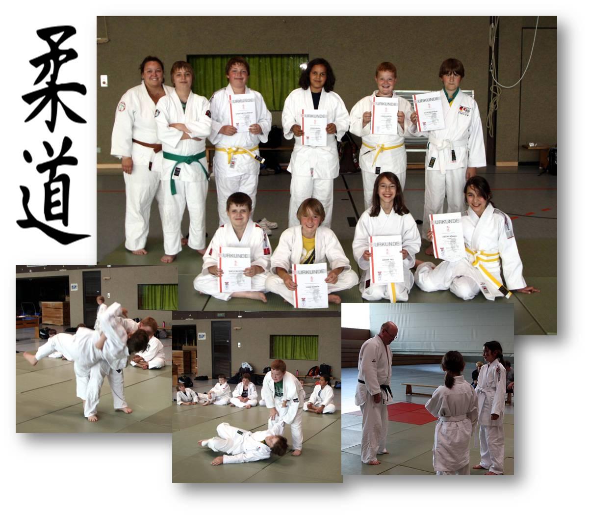 Judo 2011