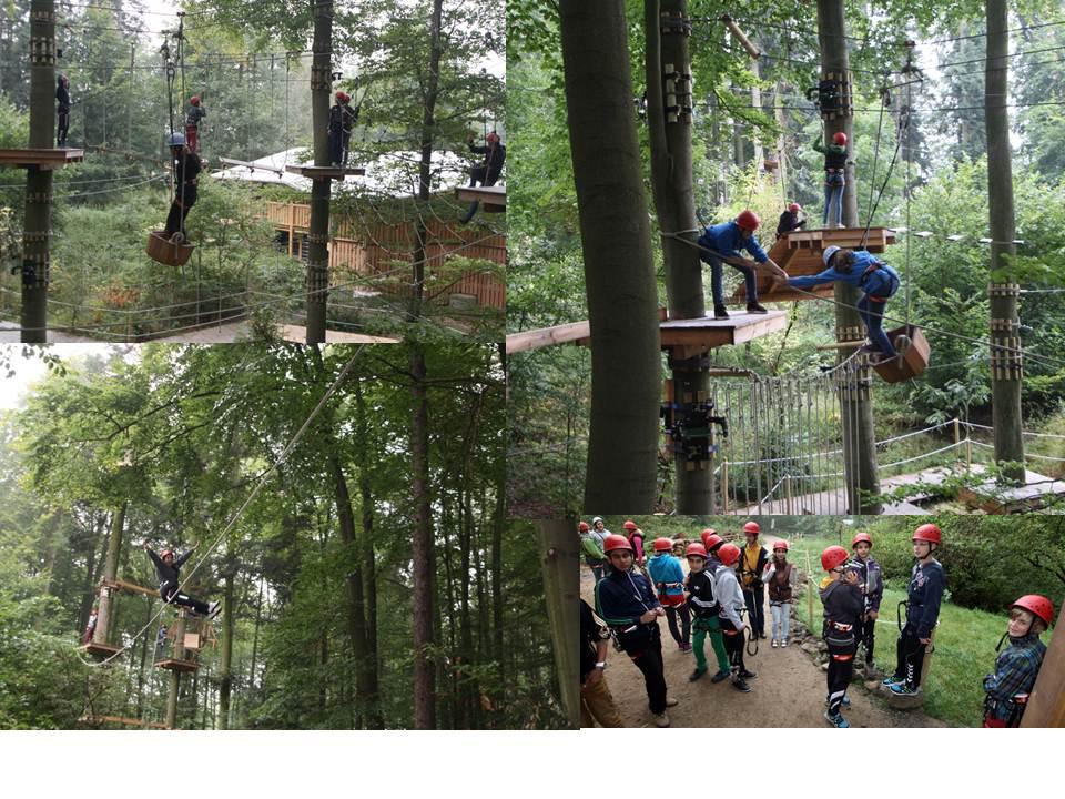 Kletterwald_3.jpg